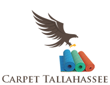 Carpet Cleaning Tallahassee
